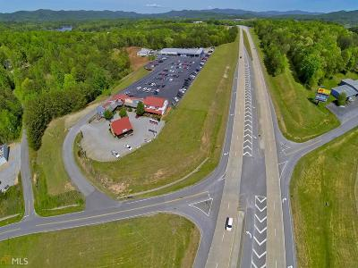 Blairsville Commercial For Sale: 44 Chevy Dr