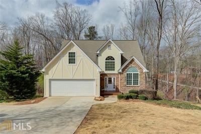 Dawsonville Single Family Home For Sale: 6595 A C Smith Rd