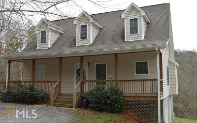 Hiawassee Single Family Home For Sale: 2615 Rolling River Dr