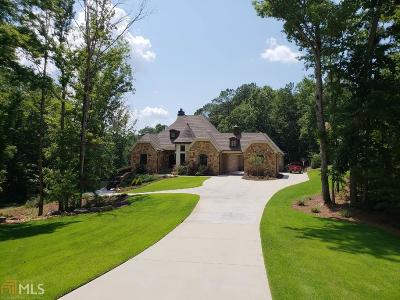 Newnan Single Family Home For Sale: 54 Pembrooke Ct