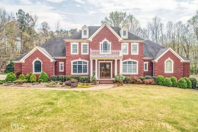 Dawsonville Single Family Home For Sale: 147 Concord Dr