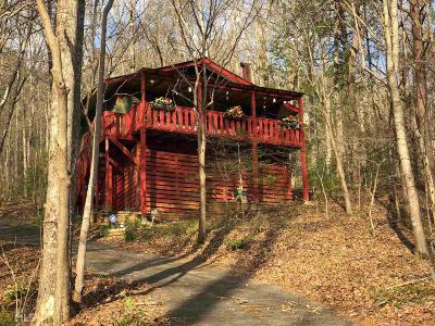 Hiawassee Single Family Home New: 4254 Rock Creek