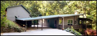 Sautee Nacoochee Single Family Home New: 613 Teresa Dr #4