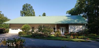 Hiawassee Single Family Home New: 809 Pear Tree Ln