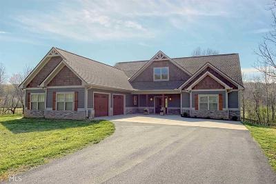 Blairsville Single Family Home For Sale: 60 McKee Creek Ln