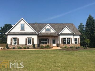 Williamson Single Family Home For Sale: 253 Ashley Glen Dr #79