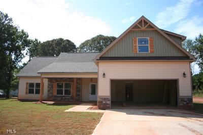 Williamson Single Family Home For Sale: 1187 Drew Allen Rd #4