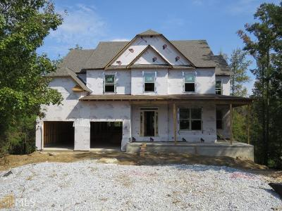 Gwinnett County Single Family Home New: 2046 Alcovy Trails Dr