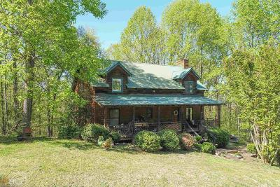 Cleveland Single Family Home New: 867 Merck Rd