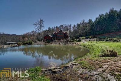 Hiawassee Single Family Home For Sale: 201 Parks Rd