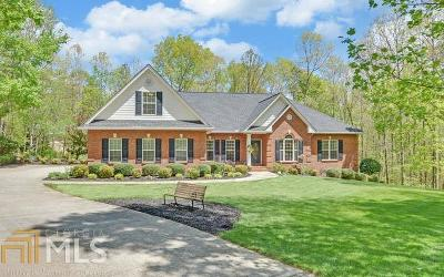 Clarkesville Single Family Home For Sale: 480 Shoals Ridge