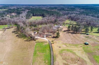 Monroe, Social Circle, Loganville Single Family Home For Sale: 2989 Ike Stone Rd