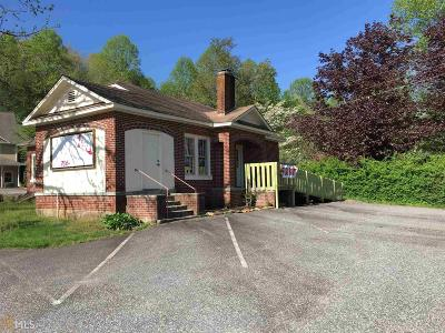 Hiawassee Commercial For Sale: 2010 W Highway 76