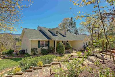 Blairsville Single Family Home Under Contract: 231 Runaway Rd #43