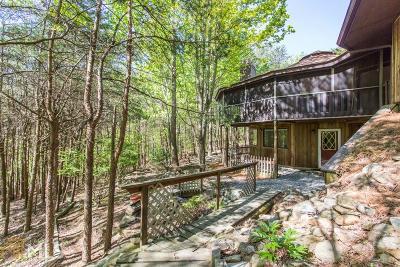 Lake Arrowhead Single Family Home For Sale: 118 Indian Oak Dr