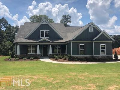 Newnan Single Family Home For Sale: North Cove Dr #13