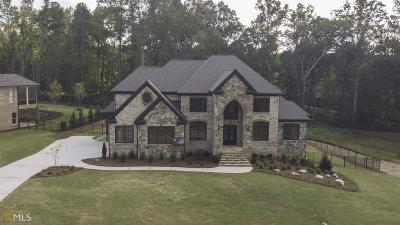 Buford Single Family Home For Sale: 4346 Alba Ln