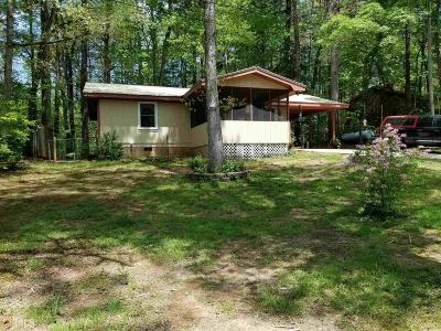 Rabun County Single Family Home For Sale: 211 Seed Tick Rd
