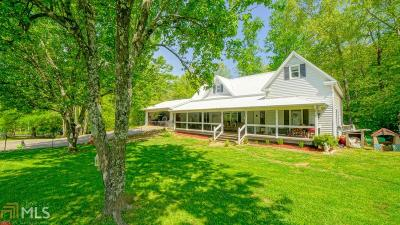 Dawsonville Single Family Home For Sale: 188 Stegall Pl