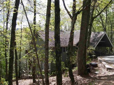 Rabun County Single Family Home For Sale: 361 East Sugarbush Dr