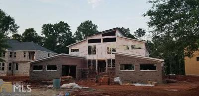 Stone Mountain Single Family Home For Sale: 920 Old Tucker Rd