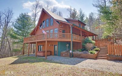 Blairsville Single Family Home For Sale: 170 Road Side Ln
