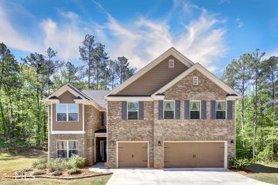 Douglas County Single Family Home New: 5221 Black Bear Tr