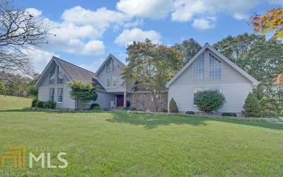 Blairsville Single Family Home For Sale: 1029 Meeks Rd