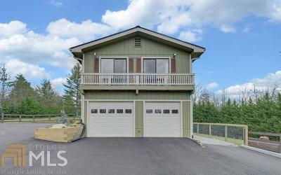 Blairsville Single Family Home For Sale: 199 Leisure Terr