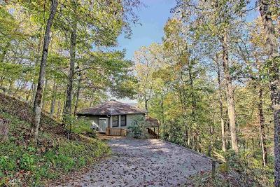 Rabun County Single Family Home For Sale: 1176 Ridgepole Dr