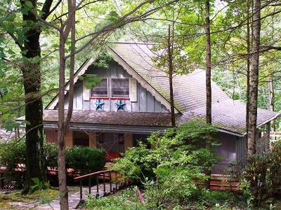 Rabun County Single Family Home Under Contract: 146 Sky High Dr