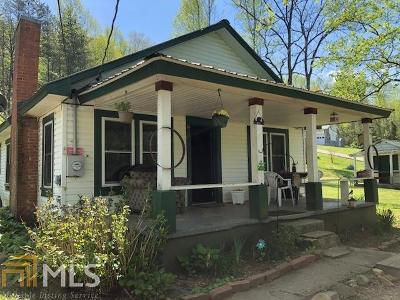 Hiawassee Single Family Home For Sale: 780 Hog Creek Rd