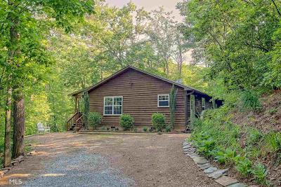 Rabun County Single Family Home For Sale: 29 Helen Ln #1