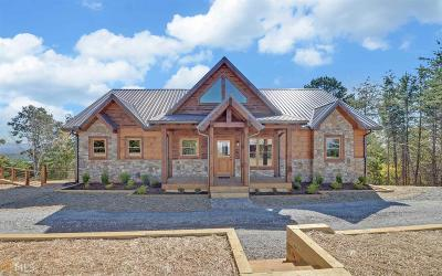 Gilmer County Single Family Home For Sale: 1695 Talona Mountain Rd