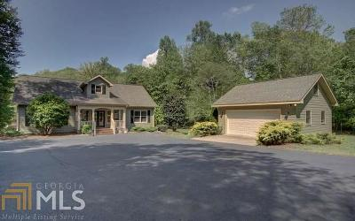 Blairsville Single Family Home For Sale: 91 Patricks Dr