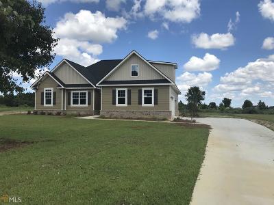 Statesboro Single Family Home For Sale: Hamilton Lndg #10