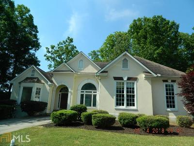 Stone Mountain Single Family Home New: 451 Water Fall Ln