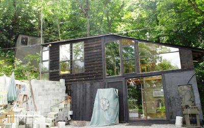 Hiawassee Single Family Home For Sale: 1236 Turkey Knob Rd