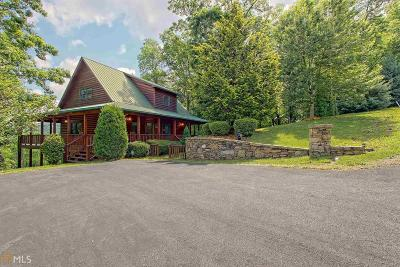 Hiawassee Single Family Home For Sale: 1705 Sheep Cliff #4