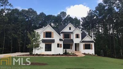 Newnan Single Family Home For Sale: Belle Maison Dr #20
