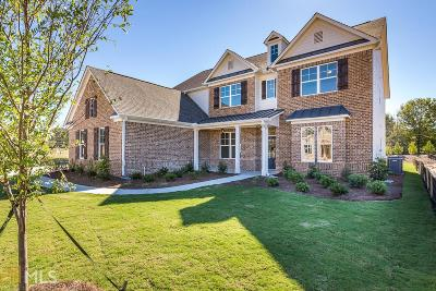 Kennesaw Single Family Home For Sale: 868 Rolling Hill