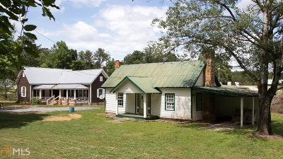 Habersham County Commercial For Sale: 3408 441 Old Historic Hwy