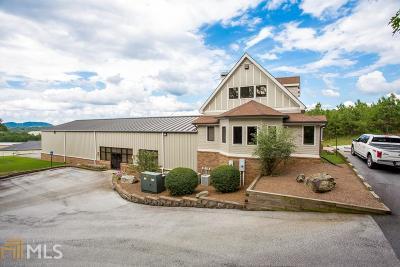 Canton, Woodstock, Cartersville, Alpharetta Commercial For Sale: 10 Kelli Clark Ct
