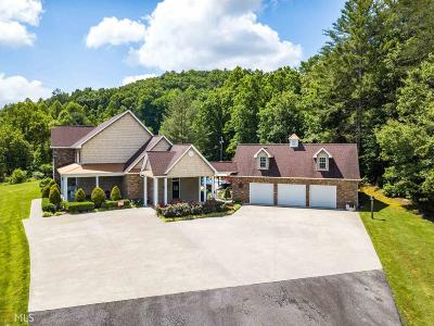 Blairsville Single Family Home For Sale: 718 Hidden Lake Rd