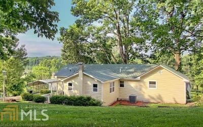 Blairsville Single Family Home New: 77 Leahs Ln