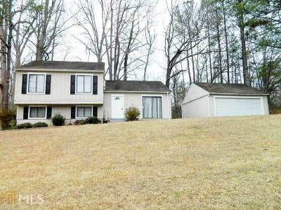 Stone Mountain Single Family Home New: 4887 Martins Xing