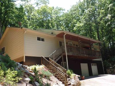 Rabun County Single Family Home For Sale: 172 Black Bear Den Rd