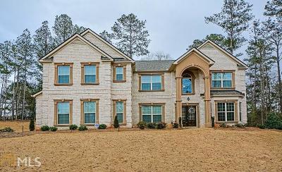McDonough Single Family Home For Sale: 244 Fannin Ln