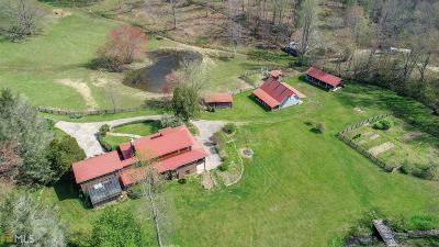 Fannin County, Gilmer County Single Family Home For Sale: 1261 Black Ankle Creek Rd