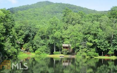 Hiawassee Single Family Home For Sale: 2153 Gillian Ln